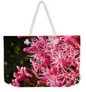 Joe Pye Weed Weekender Tote Bag