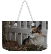 Johnny By The Fence Weekender Tote Bag