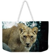 Join Me For Lunch? Weekender Tote Bag