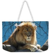 Joshua The Lion On His Rock Weekender Tote Bag