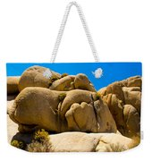 Joshua Tree 29 Weekender Tote Bag