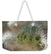 Joshua Tree Cholla Cactus Weekender Tote Bag