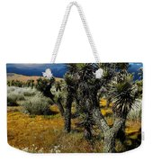 Joshuas And Sage Weekender Tote Bag