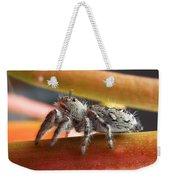 Jumper Spider Weekender Tote Bag