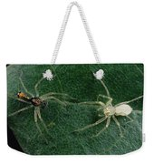 Jumping Spider Colorful Male And Pale Weekender Tote Bag