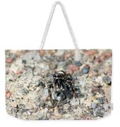 Jumping Spider Face On Weekender Tote Bag