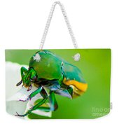 June Bug Fig Beetle Weekender Tote Bag