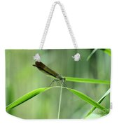 June Damselfly  Weekender Tote Bag
