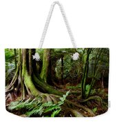 Jungle Trunks2 Weekender Tote Bag by Les Cunliffe