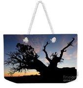 Juniper Tree, Canyonlands National Park Weekender Tote Bag