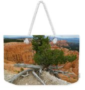 Juniper Tree Clings To The Canyon Edge Weekender Tote Bag