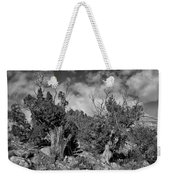 Juniper Trees At The Ghost Ranch Black And White Weekender Tote Bag