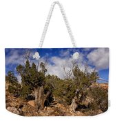 Juniper Trees At The Ghost Ranch Color Weekender Tote Bag