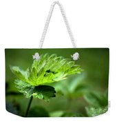 Just Green Weekender Tote Bag by Jeremy Hayden
