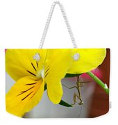 Just Hangin' Around Weekender Tote Bag