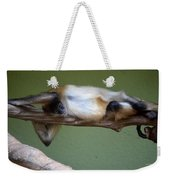 Just Hanging About Weekender Tote Bag