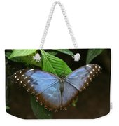 Just Hanging On Weekender Tote Bag