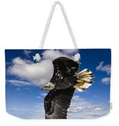 Juvenile Bald Eagle Weekender Tote Bag