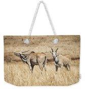 Juvenile Eland Weekender Tote Bag