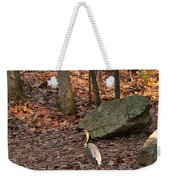 Juvenile Great Blue Heron  Weekender Tote Bag