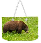 Juvenile Grizzly Bear In Kootenay Np-bc Weekender Tote Bag