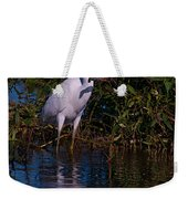 Juvenile Little Blue With Lobster 1 Weekender Tote Bag