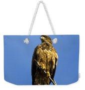 Juvenile Perch Weekender Tote Bag