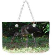 Juvenile White Ibis Weekender Tote Bag