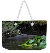Juvie Gator Weekender Tote Bag