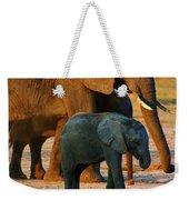 Kalahari Elephants Weekender Tote Bag