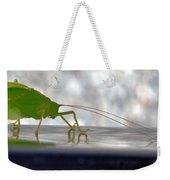 Katydid Reflection Weekender Tote Bag