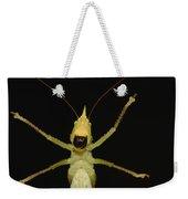 Katydid Underside Ecuador Weekender Tote Bag