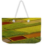 Kauai Taro Fields Weekender Tote Bag