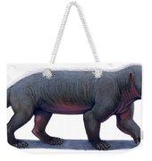 Kayentatherium, A Mammal-like Weekender Tote Bag