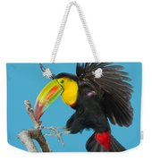 Keel-billed Toucan About To Land Weekender Tote Bag