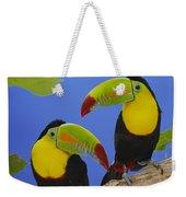 Keel-billed Toucan Pair Weekender Tote Bag