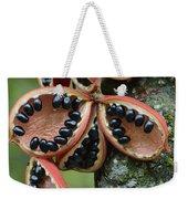 Kelumpang Sarawak Fruit Seeds Sepilok Weekender Tote Bag