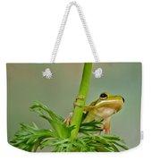 Kermits Canopy Weekender Tote Bag