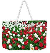 Keukenhof Gardens Panoramic 20 Weekender Tote Bag