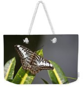 Key West Butterfly Conservatory - In Brown And White Weekender Tote Bag