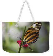 Key West Butterfly Conservatory - Papilio Zagreus Weekender Tote Bag