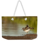Killdeer Fluffing Up On The Shore  Weekender Tote Bag