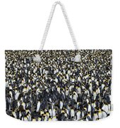 King Penguin Colony Weekender Tote Bag