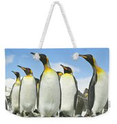 King Penguins Looking Weekender Tote Bag