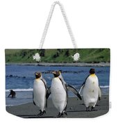 King Penguin Trio On Shoreline Weekender Tote Bag