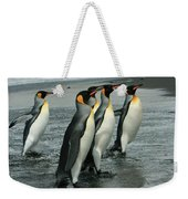 King Penguins Coming Ashore Weekender Tote Bag