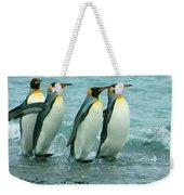 King Penguins Going To Sea Weekender Tote Bag