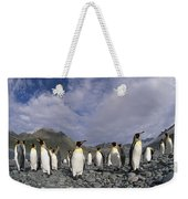 King Penguins On Rocky Beach South Weekender Tote Bag