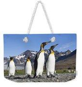 King Penguins St Andrews Bay South Weekender Tote Bag