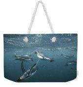 King Penguins Swimming Macquarie Isl Weekender Tote Bag